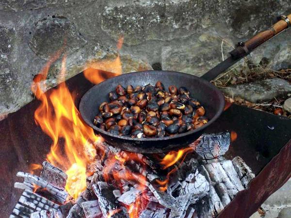Как пожарить каштаны на углях